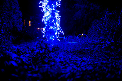 Have an Electric Blue Christmas