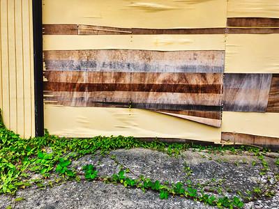 A delaminating garage door with a leafy vine below.