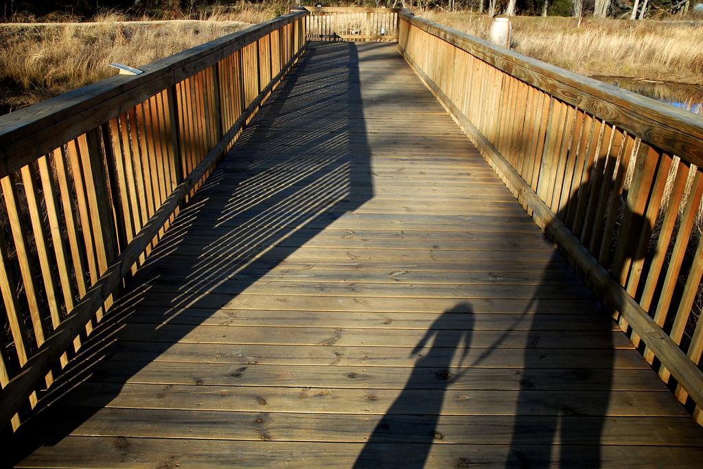 Covington, GA (Newton County) January 2011
