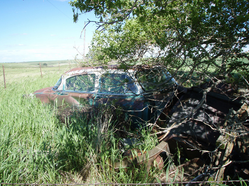 Wrecked old car on an abadoned North Dakota homestead. Shane's picture.