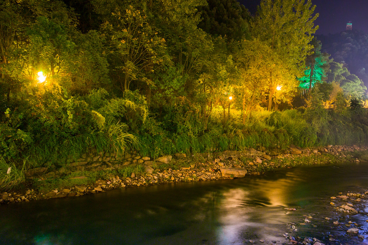The lights along this river path lit up the forest like little pixies. & Shanghai - vork azcodes.com