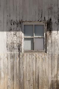 Window in Garage Door