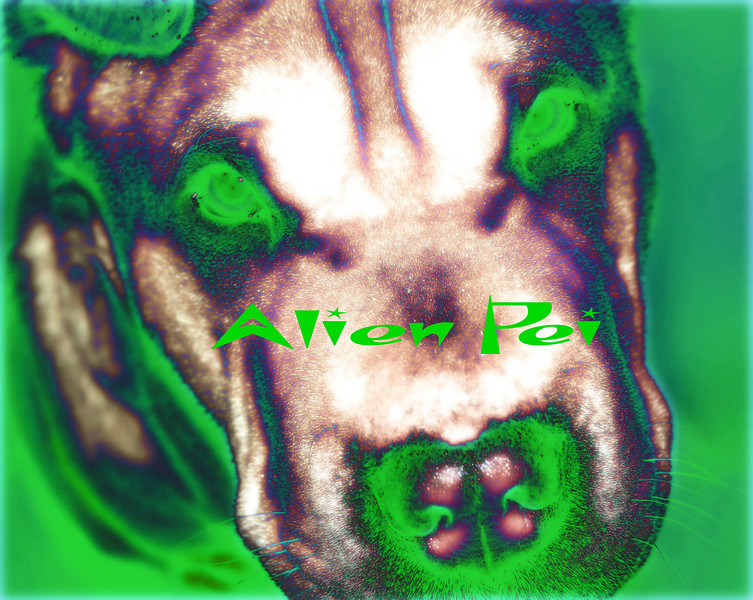 Alien Pei