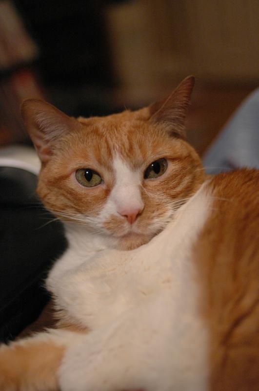 Nov 13, 2005 - posing