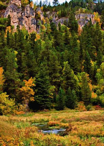 "Spearfish Canyon<br /> <br /> Visit my Greeting Card store to purchase this print as a card<br />  <a href=""http://www.greetingcarduniverse.com/dakotawindscards"">http://www.greetingcarduniverse.com/dakotawindscards</a>"