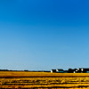 Gold is just a windy Kansas wheat field,<br /> Blue is just a Kansas summer sky. <br /> as John Denver once said...<br /> 1980 - just outside Wichita towards Hutchinson.