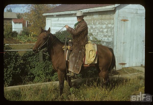 Doc Dixon [on horse back] drove cattle in. Mankota. 10/01/1954