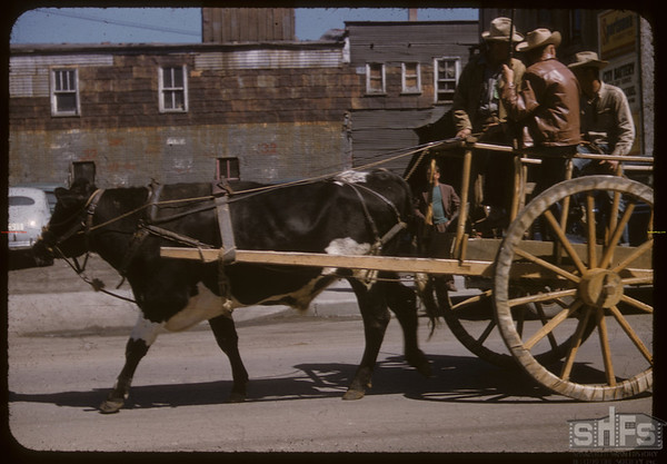 Pionera Jubilee Parade - Red River Cart. Saskatoon 07/06/1955