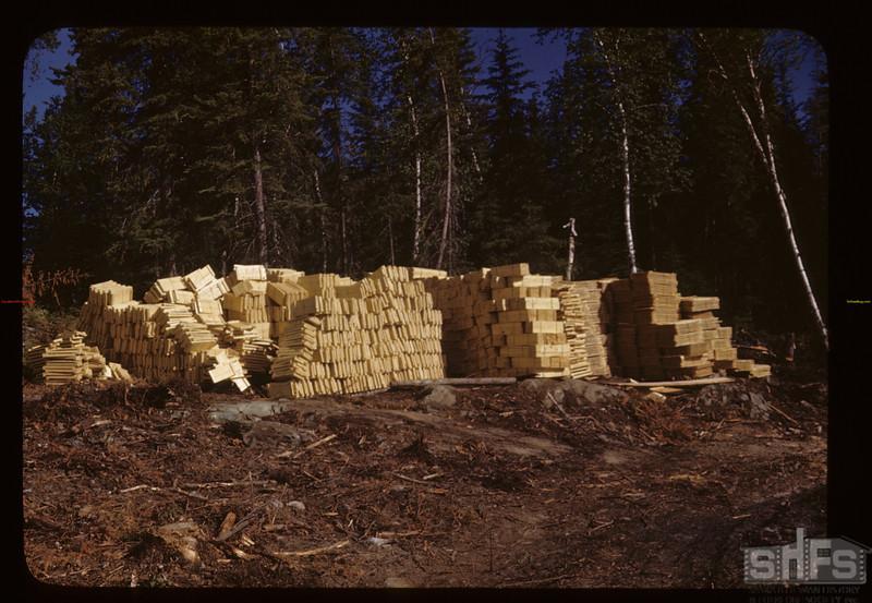 Fish boxes - from PA box factory. Beaver Lake. 06/22/1946