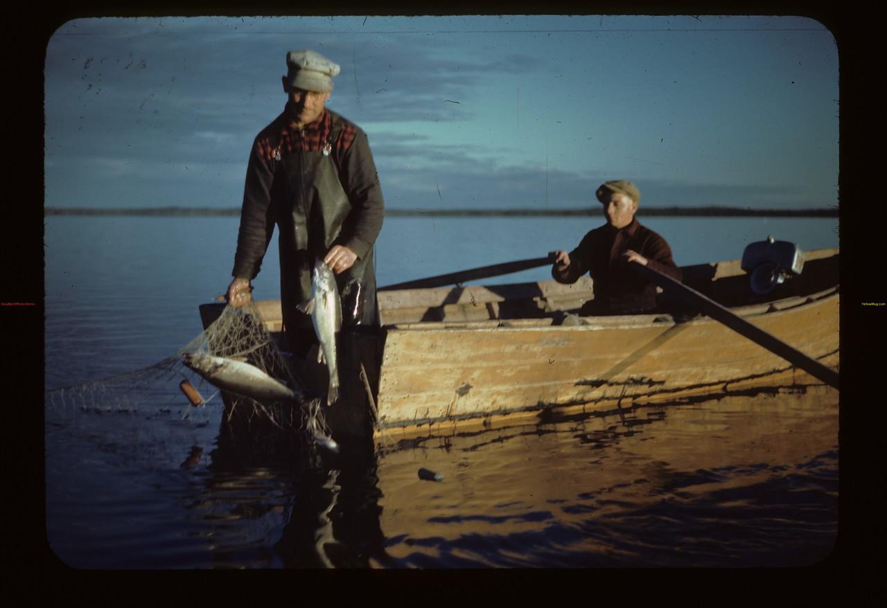 John Kulyk pulling nets - Herman Arlitt pulling oars. Loon Lake.   08/22/1944
