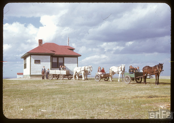 Heading home from school by horse and wagon. Rosefield 05/09/1951