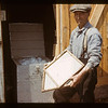 Packing pickerel eggs. Loon Lake.  04/30/1944