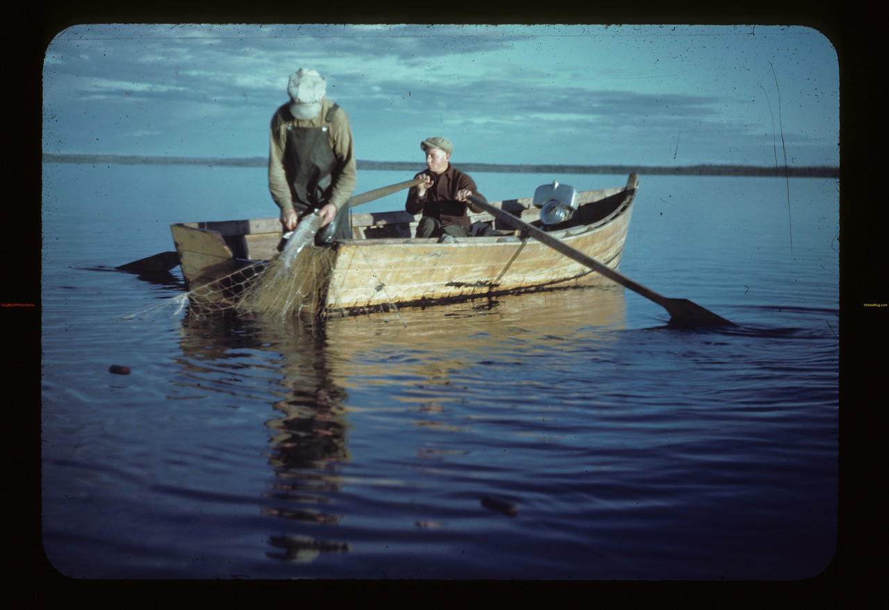 Commercial fishing. Loon Lake.  08/22/1944