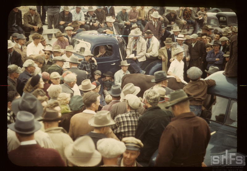 """Calf Club Sale.  Man leaning on cab of truck is Everett """"Bus"""" Johnson, man at very bottom of image facing camera is George Palmer. Consul. 05/31/1949"""