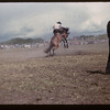 Murraydale rodeo - bucking bronco. Maple Creek. 07/08/1959