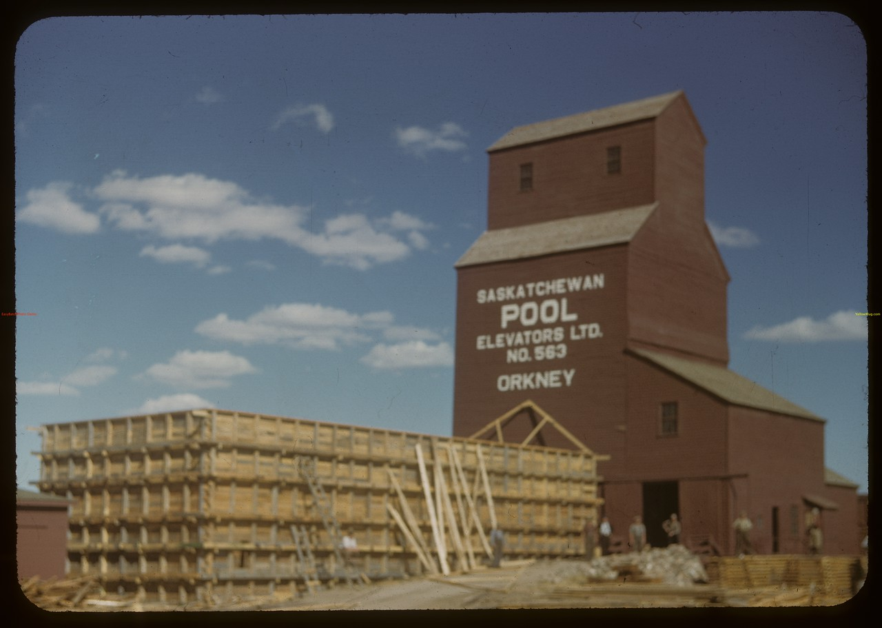 Construction of temporary bins - Pool elevator. Orkney. 09/04/1948