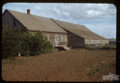 Peter's house and barn - Mennonite Village near Blumenhof. 06/28/1953