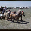 Shetlands - Gravelbourg wagon train.  Mankota.  07/03/1967