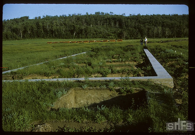 Capped concrete foundations. Fort Carleton. 06/20/1966