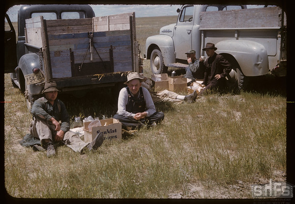 Lunch Branding Day. Lone Tree Community Pasture.  Canuck. 06/25/1957