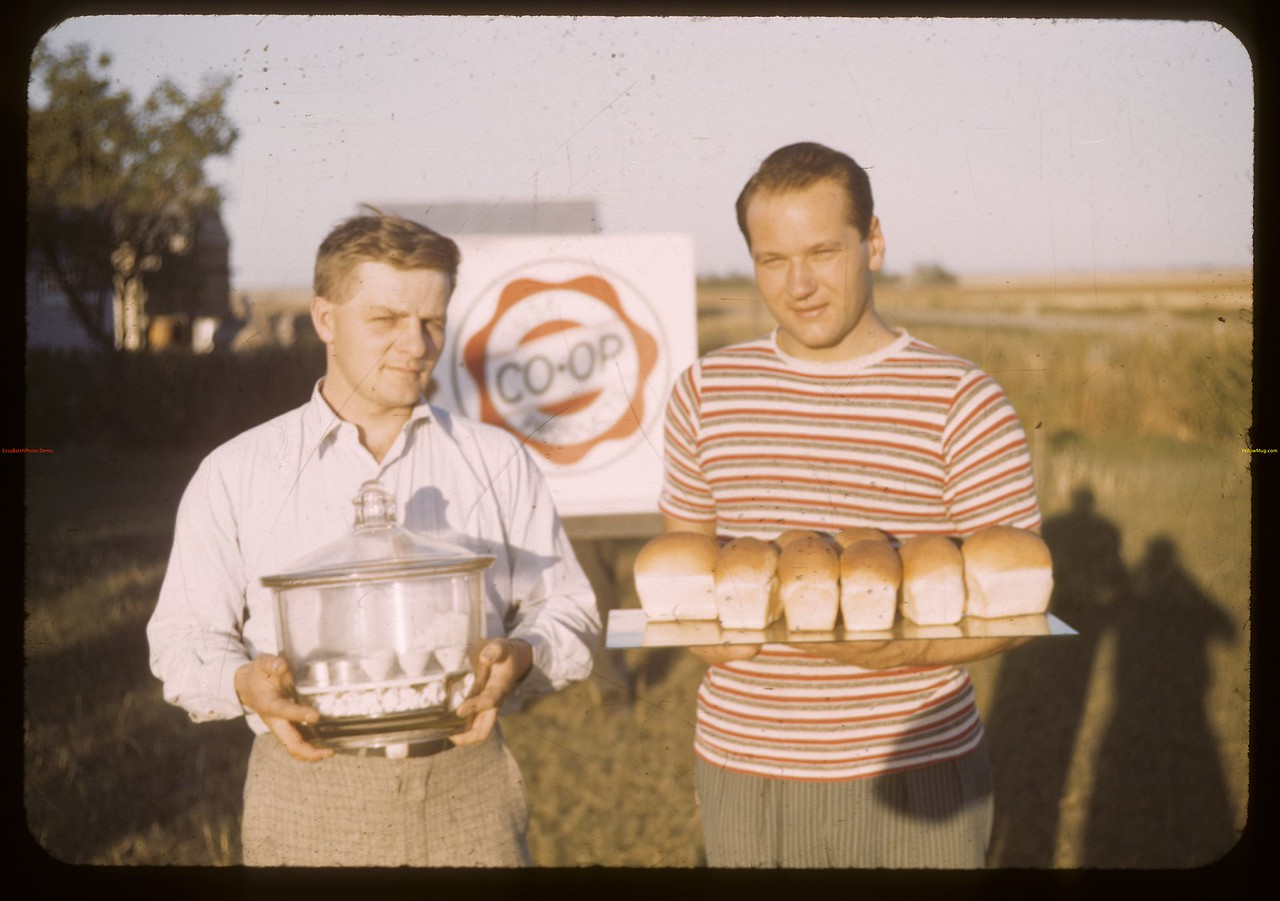 Baking test for co-op flour. Outlook. 08/17/1943