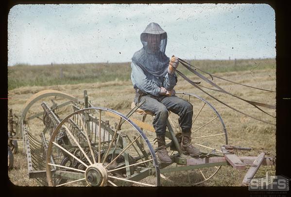 Mike Hoplock in mosqito netting [on rake].   Kincaid. 07/22/1955