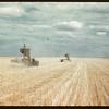 Prairie ships on Canadian Ocean of Wheat. Regina. 08/27/1946