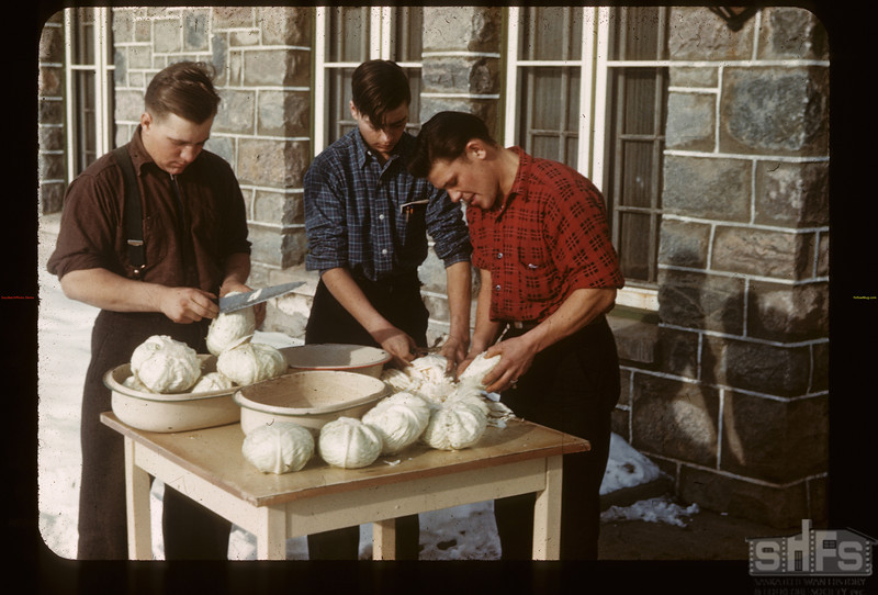 Cabbage for Dinner Y-T-S. Kenosee. 11/27/1946