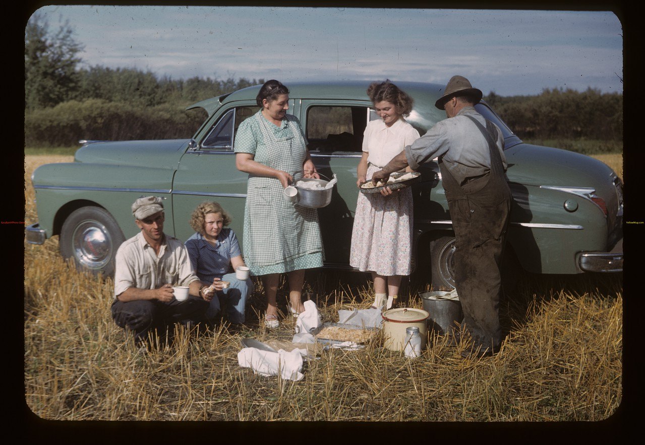 W.P.C. Chairman Frank Popp - afternoon threshing lunch. MacNutt. 09/02/1949