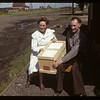 Walter English Ana Gud - Wynyard poultry pool. Wynyard. 07/12/1947
