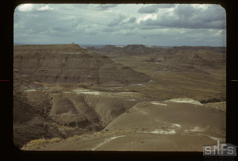 Rock Creek Canyon. Killdeer. 08/30/1942