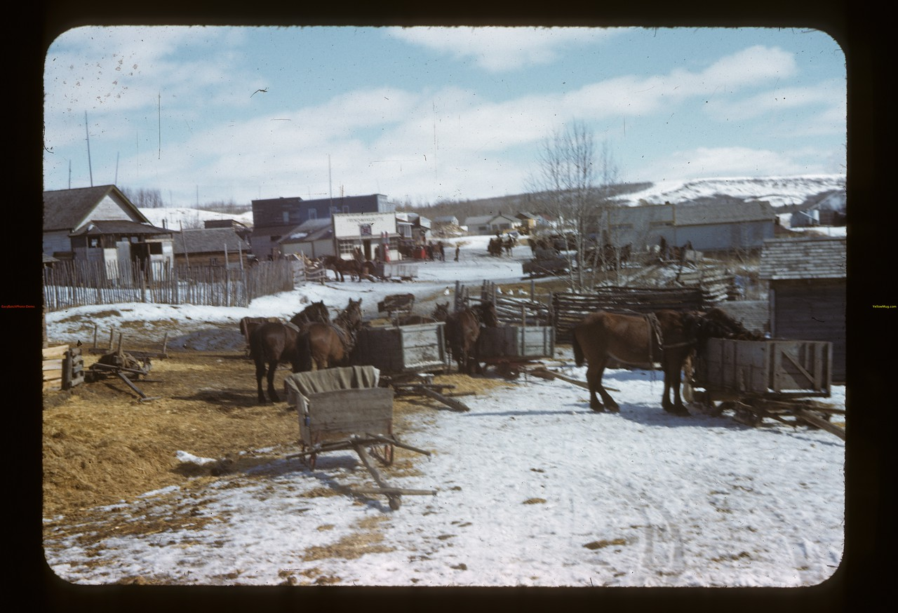 Mail day at Frenchman Butte. Frenchman Butte. 03/21/1944