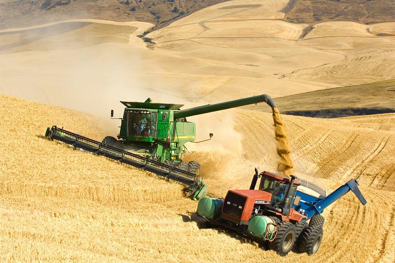 Harvesting grain in the Palouse region of Washington