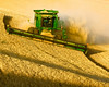 Harvesting grain in the Palouse region of Washington