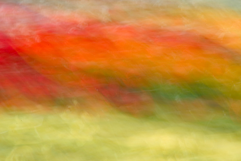 Color Abstract