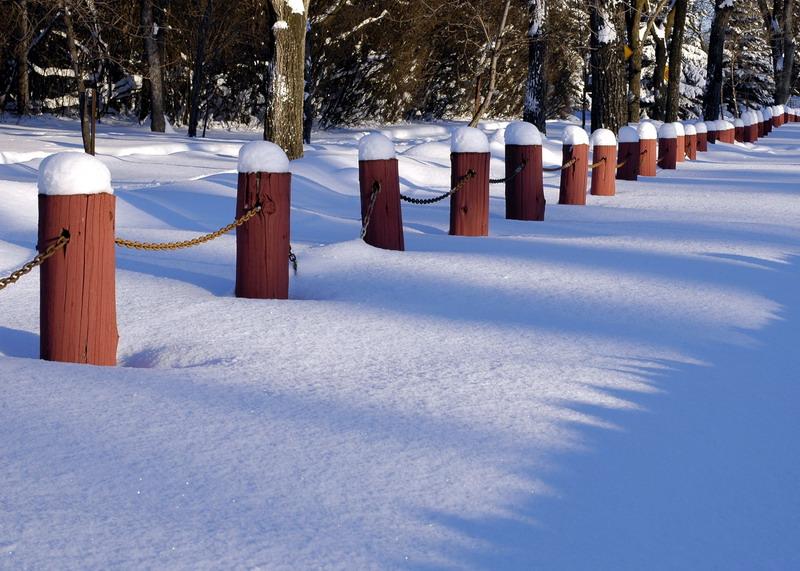 Assiniboine Park (2005)