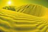 Yellow Sand Dune
