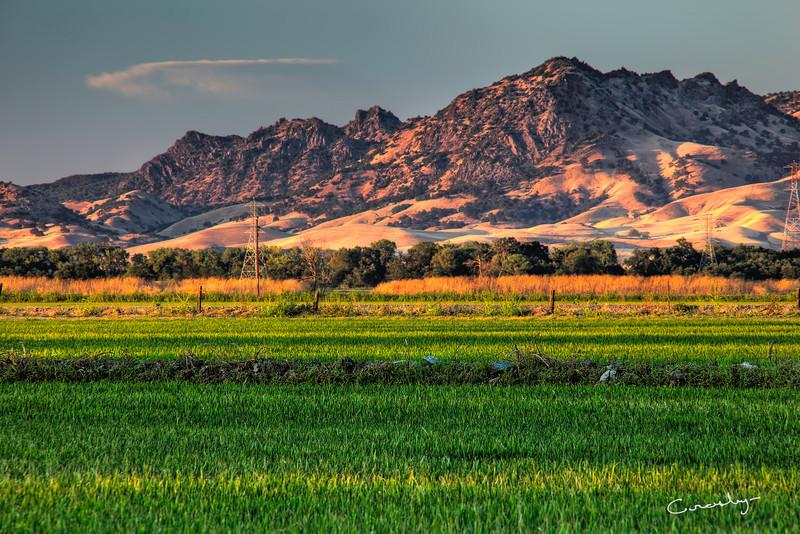 Sutter Buttes Sunset Mood
