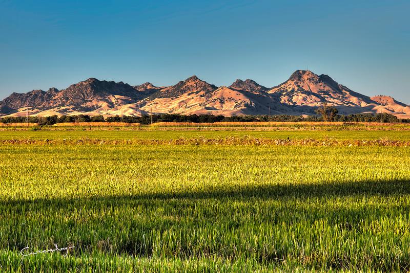 Summer Sunset, Sutter Buttes