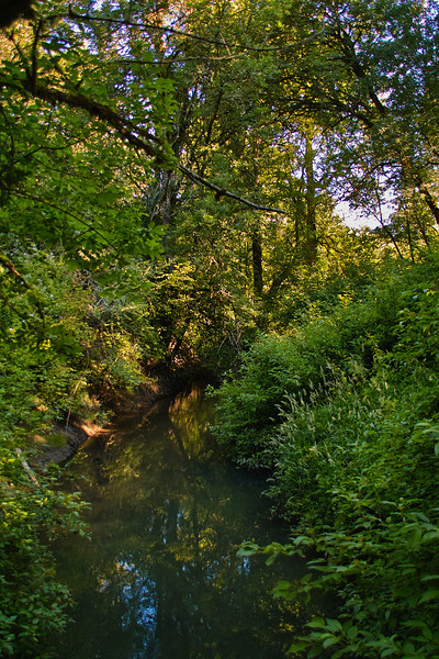 Rock Creek, Noble Woods Hillsboro
