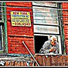"Windowguy, Little Italy  One of my all-time favorite captures!  This man is busy watching the set up for the first night of the San Gennaro festival in New York City's Little Italy.  The San Gennaro festival is one of the city's largest and most popular street fairs and takes place every fall.  <a href=""http://www.youtube.com/watch?v=x3bfLtgymF0&feature=related"">www.youtube.com/watch?v=x3bfLtgymF0&feature=related</a>  <b>Not to be reproduced without the written permission of Florence T. Gray</b>"