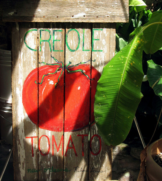 Creole tomatoes. (New Orleans)