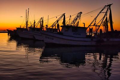 Fulton Harbor Shrimp Boats