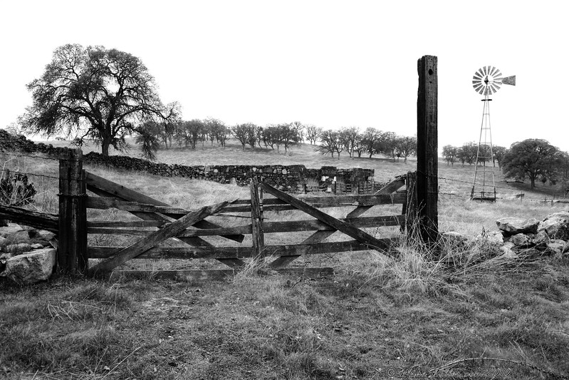 Gate to Past