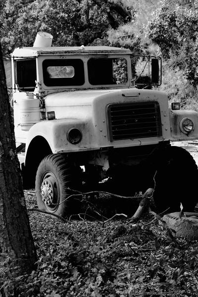 Black Eye Truck