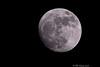 Our Neighbor, Our Moon