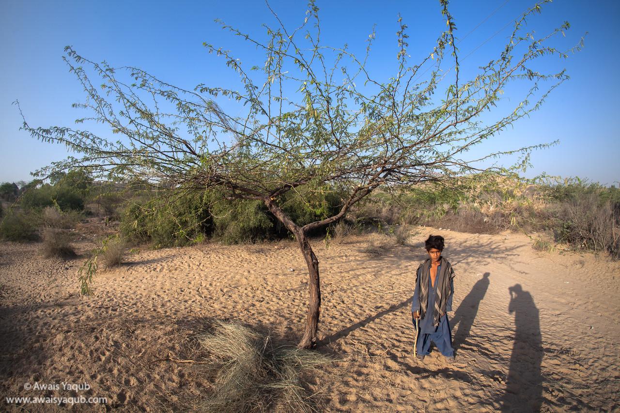 Tharri boy poses under the tree in his neighbourhood
