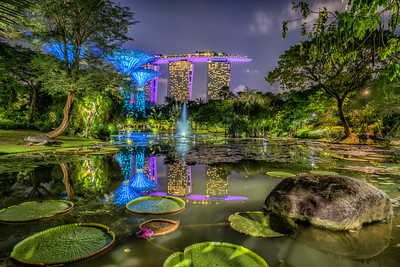 Reflections at Gardens by the Bay
