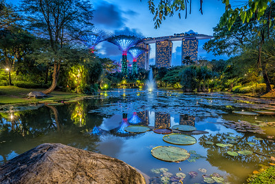 Reflections at Gardens by the Bay, Dusk