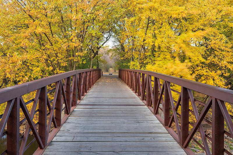 Pasley Park Bridge